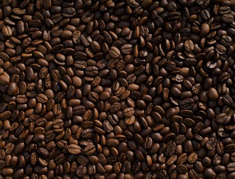 Best Unique Coffee In Boulder Benefits Of Coffee Grounds For Skin Robusta Starbucks Iced No Classic Nutrition Creamer Vs Milk Powder Travel Creamers Flavors Secret Menu In Bottle Sugar Content