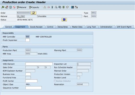 production order  process order erp manufacturing pp