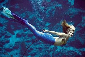 Weeki Wachee Mermaids Visit Fort Fisher Aquarium