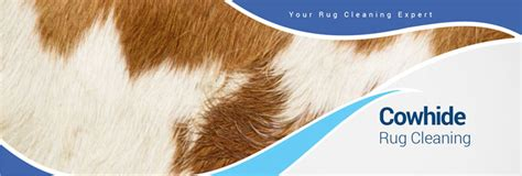 Cowhide Rug Maintenance by Cowhide Rug Cleaning In The Dallas Fort Worth Area