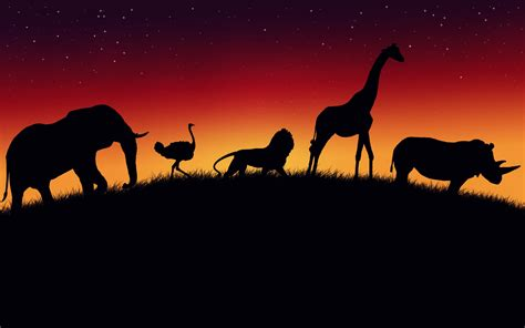 Animal Silhouette Wallpaper - safari animals silhouett hd wallpaper background images