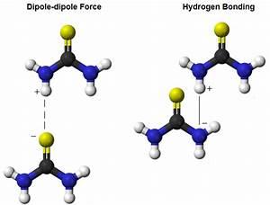 Thiourea  Intermolecular Forces  U0026 Polarity