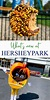 What's New at Hersheypark? - A Turtle's Life for Me