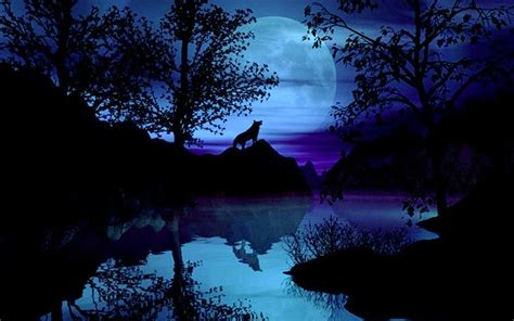 3d Wallpapers Wolf by Free Wolf Backgrounds Wallpaper Cave