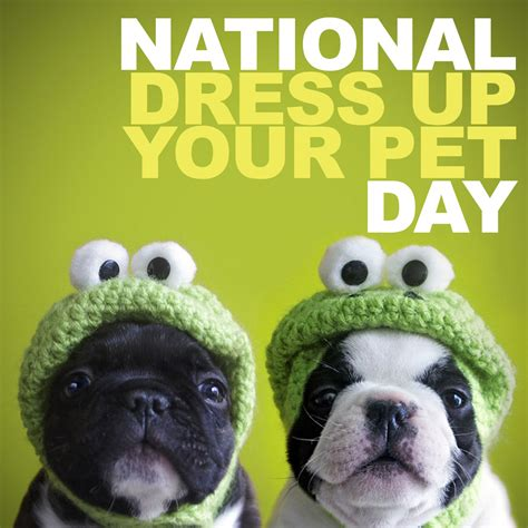 National Dress Up Your Pet Day  Daily Focal. Cheap Garage Door. Internet Door Lock. Global Door Controls. Door Chains. Fiberglass French Patio Doors With Blinds. Over The Door Mirror With Jewelry Storage. United Garage Door Columbus Ohio. Carved Doors
