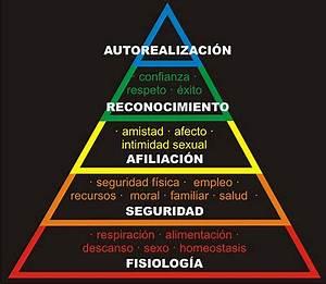 ¿Qué es y para qué sirve la pirámide de Maslow? Agencia La Nave
