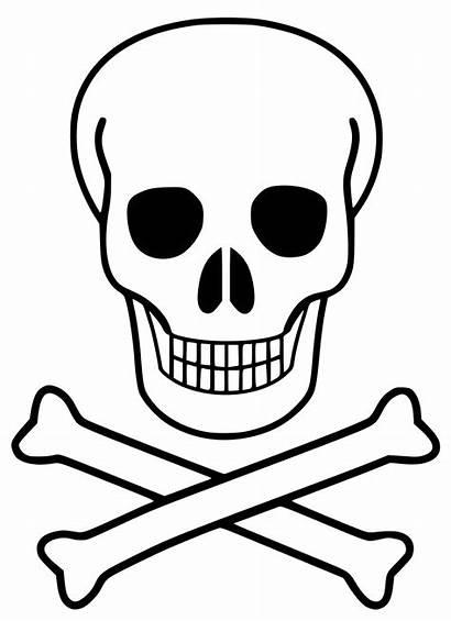 Svg Skull Crossbones Wikimedia Commons