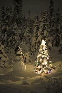 Pinterest Sapin De Noel : bonhomme de neige veillant sur sapin blanc attend patiemment rennes et p re no l noel ~ Preciouscoupons.com Idées de Décoration
