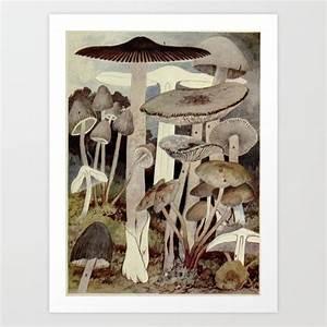 Vintage Mushroom Diagram Art Print By Bluespecsstudio