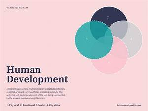 Female Human Development Diagram