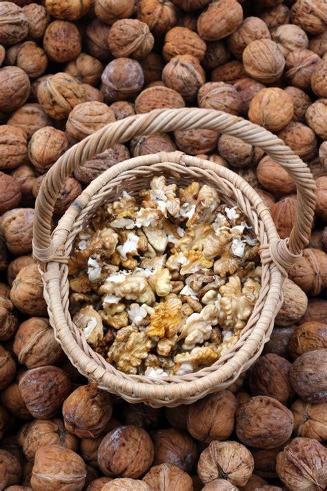 comment cuisiner du choux chinois les noix sont des aliments énergie 10 aliments pour