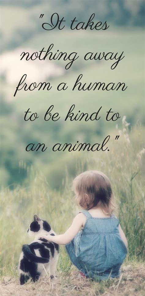 Quotes Taking Care Animals
