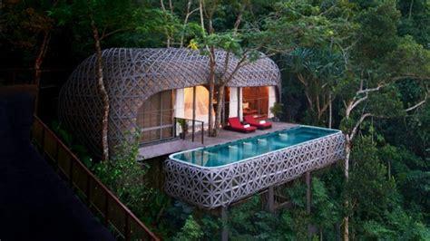 rumah pohon impian  ternyata sebenarnya bisa kamu