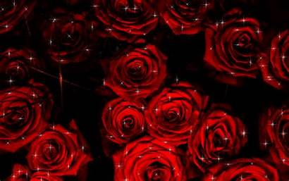 Roses Animated Google Plus Glitter Rose Gifs