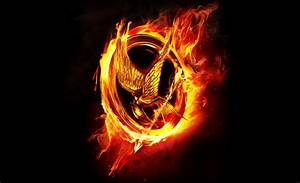 Mocking Jay  The Hunger Games Photo (33328416)  Fanpop