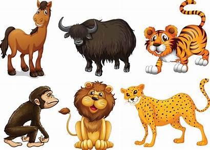 Jungle Theme Animals Shac Graphics