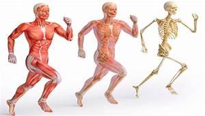 Дали знаете што се случува со вашето тело ако трчате само ...
