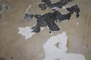 Pvc Boden Kleber : alten pvc kleber entfernen welcher untergrund ist das bodenbelag ~ Orissabook.com Haus und Dekorationen