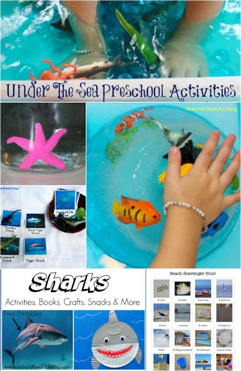 200 of the best preschool themes and lesson plans 491 | under the sea activities