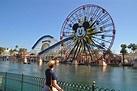 Disney California Adventure Park   Conscious Engagement