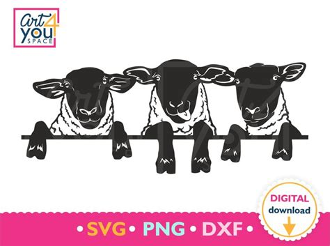 Polish your personal project or design with these farm animals transparent png images, make it even more personalized and more attractive. Sheep svg, Funny Lamb svg, Flock of suffolk sheep, Farm ...