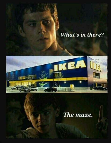 The Maze Runner Memes - the maze runner memes 1 wattpad