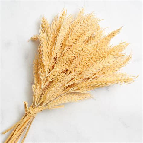 Artificial Wheat Bundle - Bushes + Bouquets - Floral Supplies - Craft Supplies - Factory Direct ...
