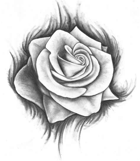 disegni di fiori a matita disegni a matita rosa grandi dimensioni bianco nero sfondo