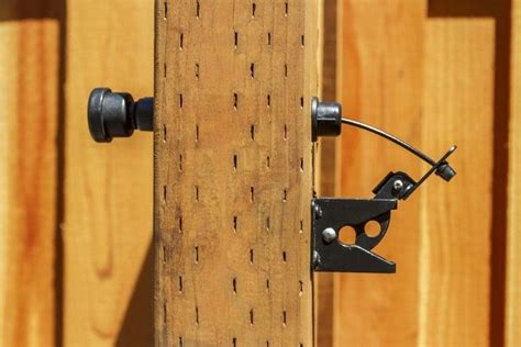 Tiny Double Gate Thumb Latch
