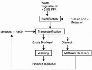 Biodiesel Production Flow