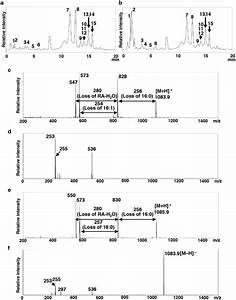 Liquid Chromatography Coupled With Tandem Mass