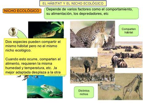 la estructura de los ecosistemas