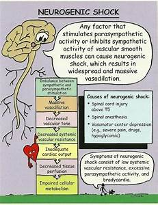 Neurogenic Shock Diagram On Meducation