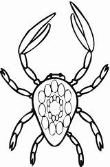 Crab Coloring Pages Printable Animal Coloringpages101 sketch template