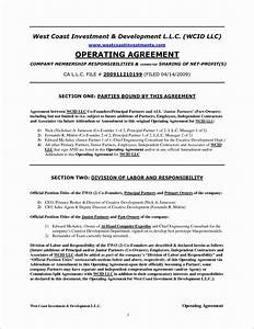 50 awesome sample of operating agreement for single member With llc documents texas