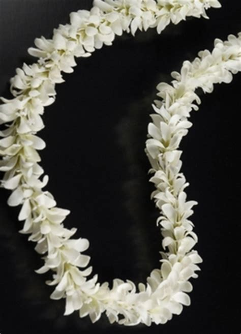 jasmine flowers stephanotis wedding flowers