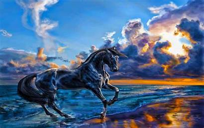 Nature Horse Wallpapers Sky Animals Mighty Beauty