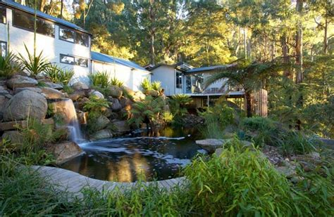 Swimming Pond : The Owner-builder Network