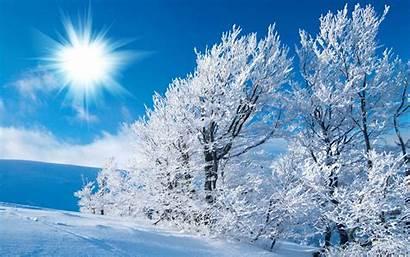 Winter Season Nature Background Backgrounds Scene Desktop