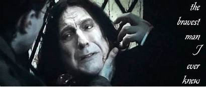 Snape Severus Dh Harry Fanpop