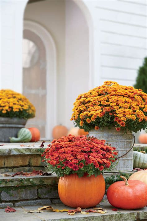 diy gardening ideas  fall