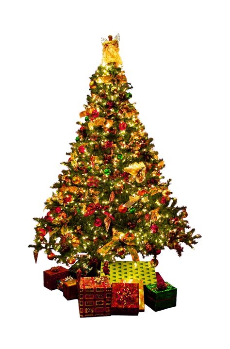 what is the sybolises cgristmas tree tree 14 extraordinary symbolism of the tree symbolism of the