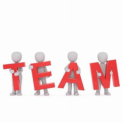 Team Colleagues Pixabay Human Cooperation Together Business