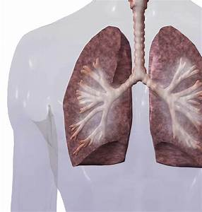 Copd Medications  U2013 What U0026 39 S Best For You