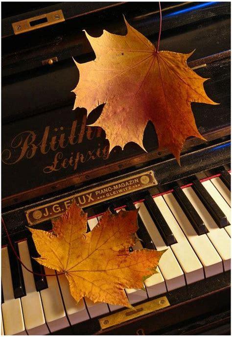 autumn leaves drift   window love  hear