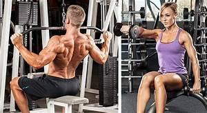 Bodybuilding Beginners For Women And Men