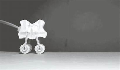 Soft Touch Softer Robots Walker Inside Science
