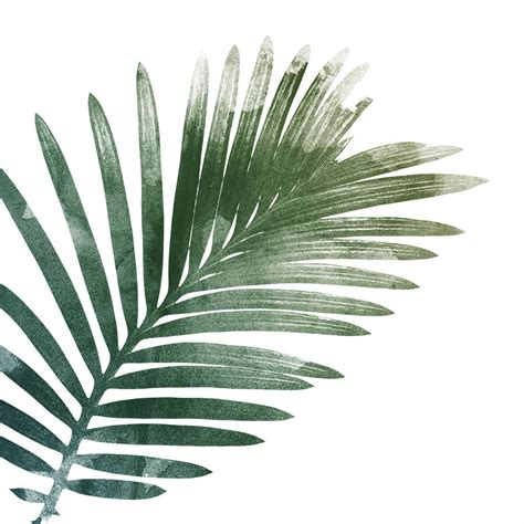 The fronds end up being large enough that the children can carry them around waving them for a discard the template (unless you want to make more leaves). palm leaf art print by georgie st clair | notonthehighstreet.com