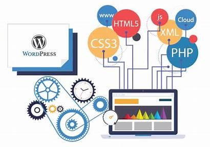 Wordpress Designing Web Company Development Mumbai India