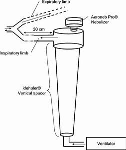 Diagram Of The Nebulization Setup